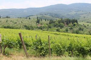 La Cascianella - AbcAlberghi.com