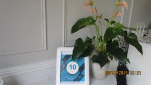 10 on Navesink, Apartmány  Plettenberg Bay - big - 15
