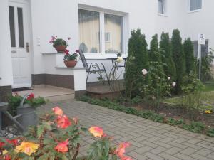 Ferienwohnungen Stranddistel, Apartmány  Zinnowitz - big - 44