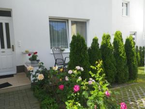 Ferienwohnungen Stranddistel, Apartmány  Zinnowitz - big - 38