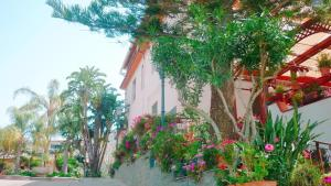 PARADISO Hotel Ristorante
