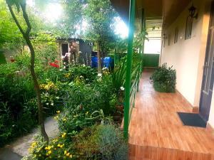 Guest House Villa, Гостевые дома  Кварели - big - 59