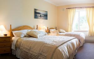 Grove House Bed & Breakfast, Bed and Breakfasts  Carlingford - big - 11