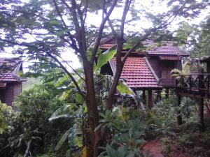 Nature House, Комплексы для отдыха с коттеджами/бунгало  Banlung - big - 78