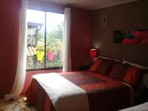Hotel Rancha Azul, Bed and breakfasts  Alajuela - big - 51