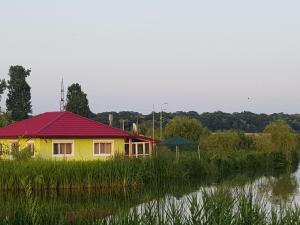 Casa Verde, Dovolenkové domy  Căldăruşani - big - 60