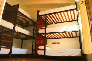 Nomad Hostel, Hostelek  Santa Cruz de la Sierra - big - 4
