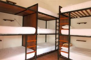 Nomad Hostel, Hostely  Santa Cruz de la Sierra - big - 5