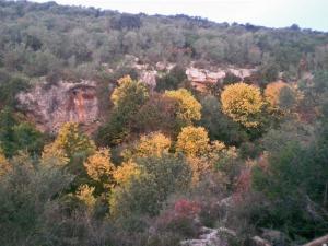 Centro de Naturaleza Cañada Verde, Farmházak  Hornachuelos - big - 21