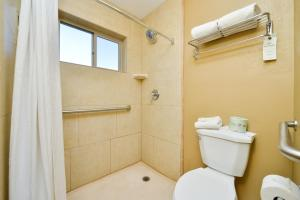 King Suite with Mobility Accessible Roll-In Shower - Non-Smoking