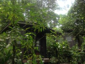 Yatama EcoLodge and Reserve