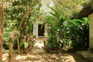 Serene Home, Apartmány  Unawatuna - big - 30
