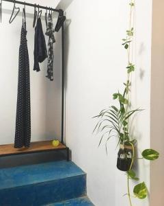 Serene Home, Apartmány  Unawatuna - big - 29