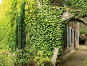L'Affable, Bed & Breakfasts  Les Cammazes - big - 41
