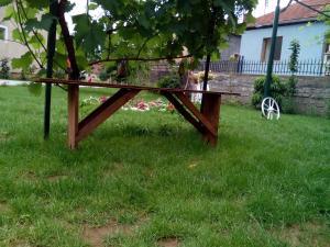 Guest House Vila Banjica, Pensionen  Pirot - big - 50