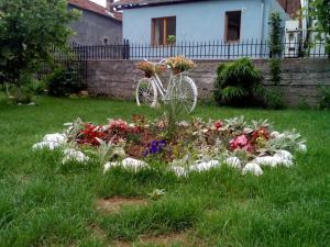 Guest House Vila Banjica, Pensionen  Pirot - big - 110