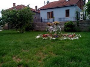 Guest House Vila Banjica, Pensionen  Pirot - big - 62