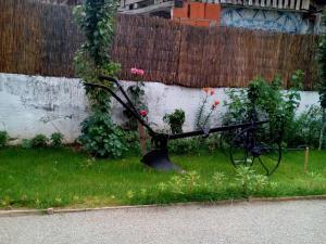 Guest House Vila Banjica, Pensionen  Pirot - big - 108