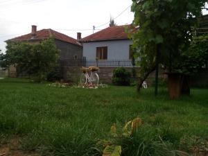 Guest House Vila Banjica, Pensionen  Pirot - big - 107