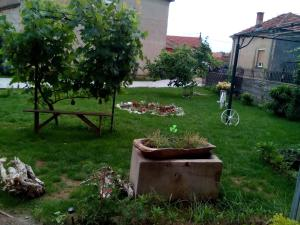 Guest House Vila Banjica, Pensionen  Pirot - big - 49