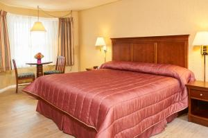 Stockton Inns, Motels  Cape May - big - 21