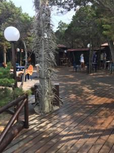 Rosa Marina Frontline Beach, Holiday homes  Ostuni - big - 2