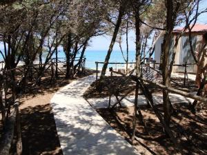 Rosa Marina Frontline Beach, Holiday homes  Ostuni - big - 12
