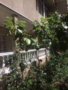 Classic Apartment on Kievyan, Apartmány  Yerevan - big - 30