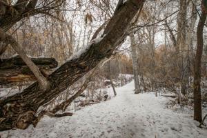 Bozeman30 - Trailside Retreat, Prázdninové domy  Bozeman - big - 15