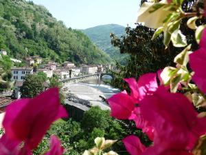Villa Rosalena - Accommodation - Bagni di Lucca