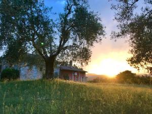 La casa di Lisetta - AbcAlberghi.com
