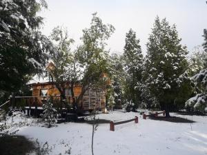 Alojamiento Turistico Lemulen Limitada, Holiday homes  Melipeuco - big - 36