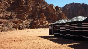 Wadi Rum Traditional Bedouin Life Camp and Tours