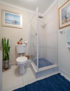 Sea Spray Chalet, Apartments  Muizenberg - big - 21