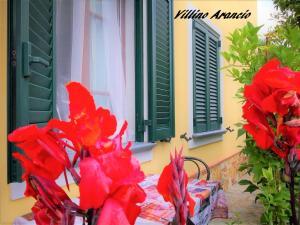 villino Arancio, Case vacanze  Massarosa - big - 19