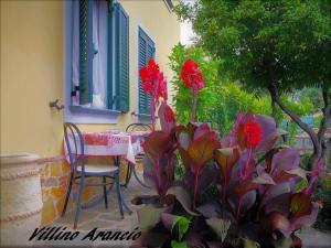villino Arancio, Case vacanze  Massarosa - big - 48