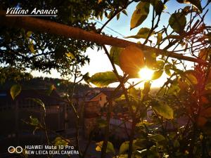 villino Arancio, Case vacanze  Massarosa - big - 64