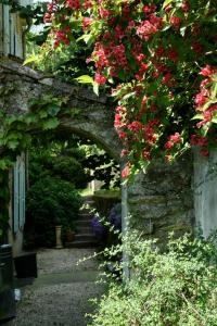 L'Affable, Bed & Breakfasts  Les Cammazes - big - 38