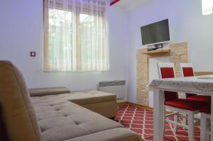 Apartments Josipovic, Appartamenti  Zlatibor - big - 3