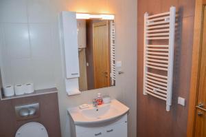 Apartments Josipovic, Appartamenti  Zlatibor - big - 49