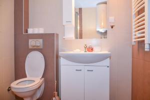 Apartments Josipovic, Appartamenti  Zlatibor - big - 48