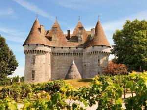 Domaine Le Perrot, Case vacanze  Saint-Nexans - big - 2