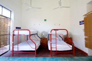 Nomadas Hostel, Хостелы  Мерида - big - 29