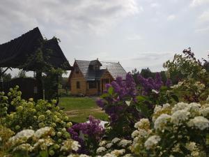 Chata Residence Castelane Gaśno Polsko