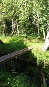 Peši, Дома для отпуска  Rucava - big - 21
