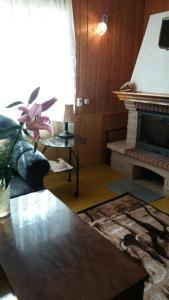 Peši, Prázdninové domy  Rucava - big - 20