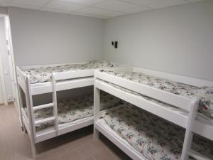 Bed in 4-Bed Mixed Dormitory Room without Window
