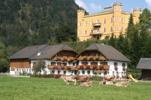 Schlossmayrhof, Farmházak  Sankt Gilgen - big - 19