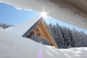 Chalet Kuschelhütte, Chalet  Ramsau am Dachstein - big - 8
