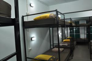 Bunk Bed in Mixed 14-Bed Dormitory Room (Room B)